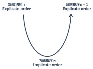 Implicate_order